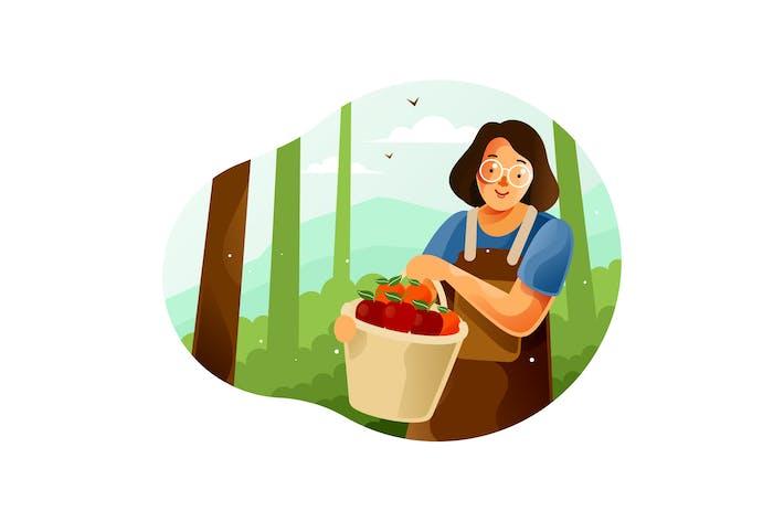 Thumbnail for Harvest fruit from the garden