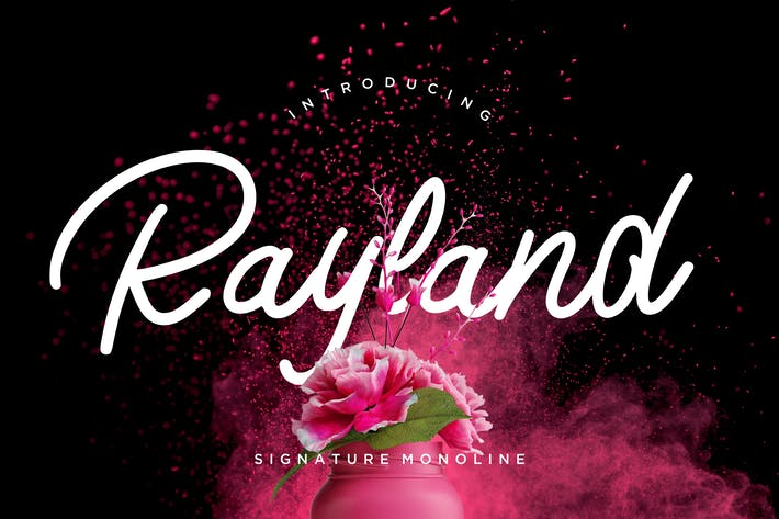 Thumbnail for Rayland Signature Monoline Cover case Negro