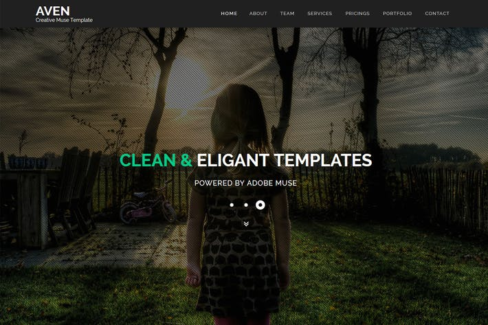 Thumbnail for Aven - Multipurpose Parallax Muse Template