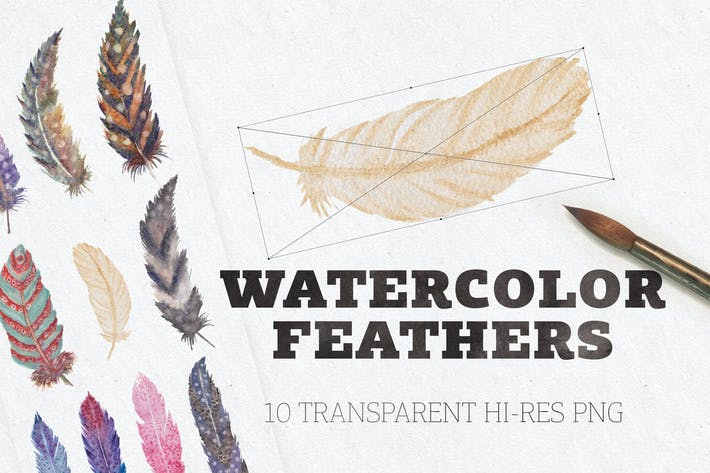 Thumbnail for Watercolor Feathers
