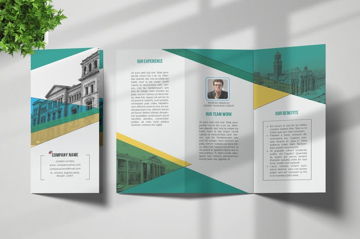 Thumbnail for Trifold Brochure Template