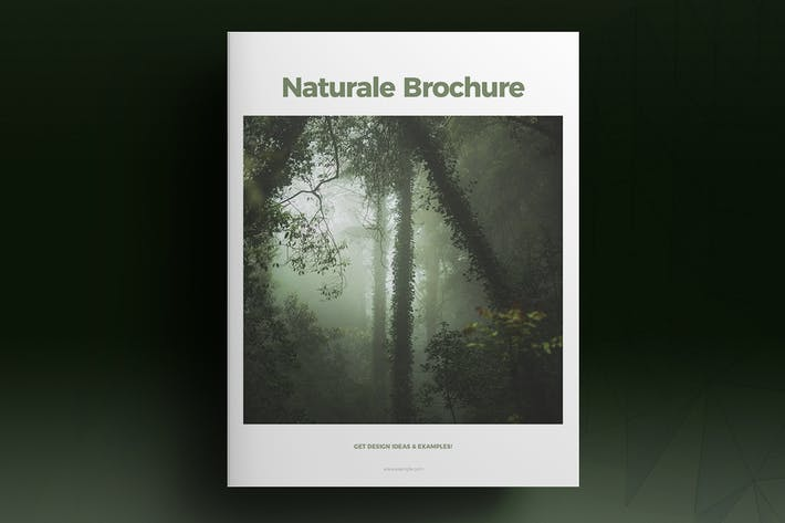 Thumbnail for Green Lifestyle Brochure Template