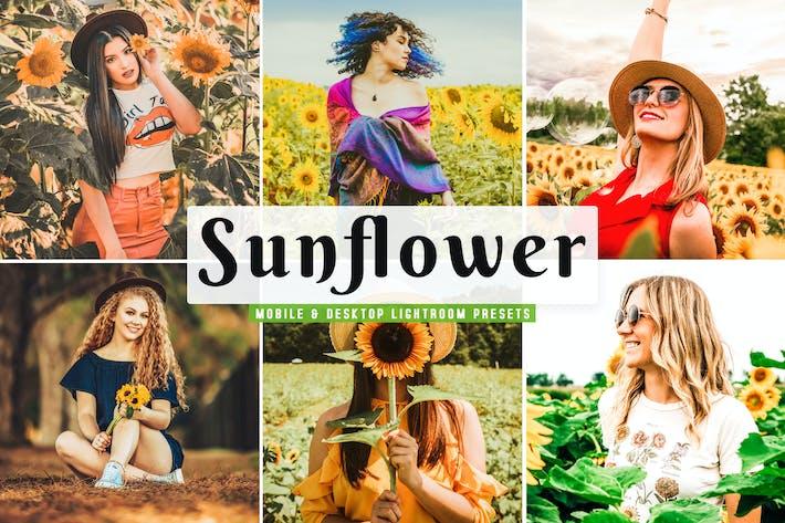 Thumbnail for Sunflower Mobile & Desktop Lightroom Presets