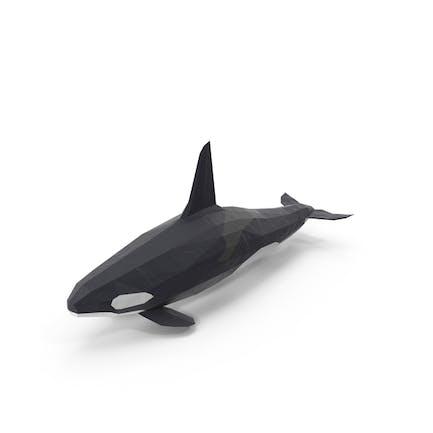 Low Poly Orca Wal