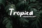 Tropica - Handwritten Font