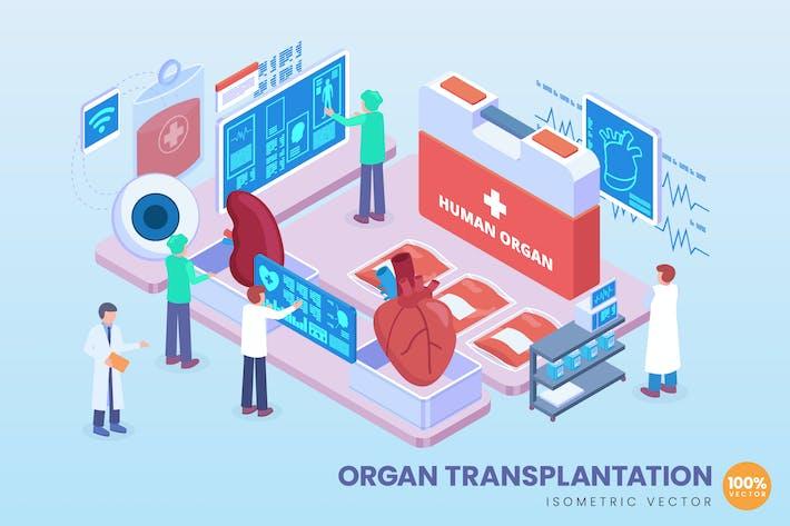 Thumbnail for Isometric Organ Transplantation Vector Concept