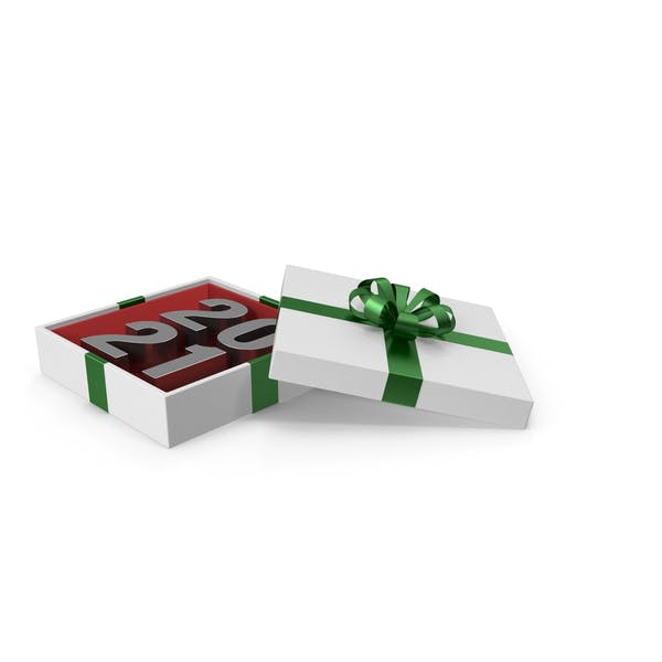 Silver Symbol 2021 in White Gift Box with Green Ribbon
