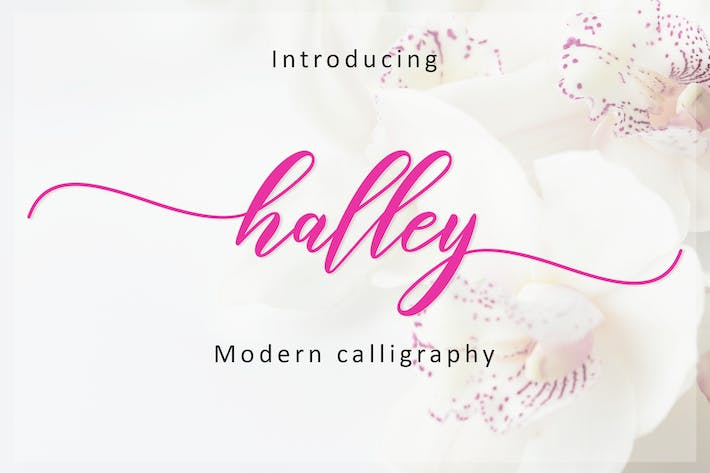 Thumbnail for Halley Script