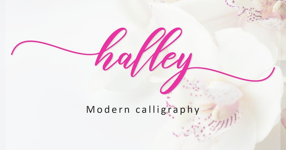 Download Halley Script by amarlettering