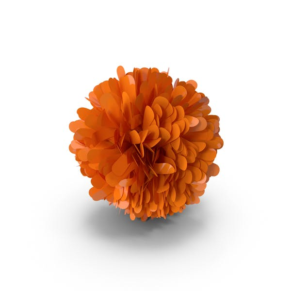 Thumbnail for Orange Pom Pom