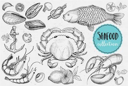 Meeresfrüchte Elemente