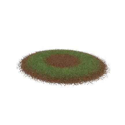 Grass with Dirt