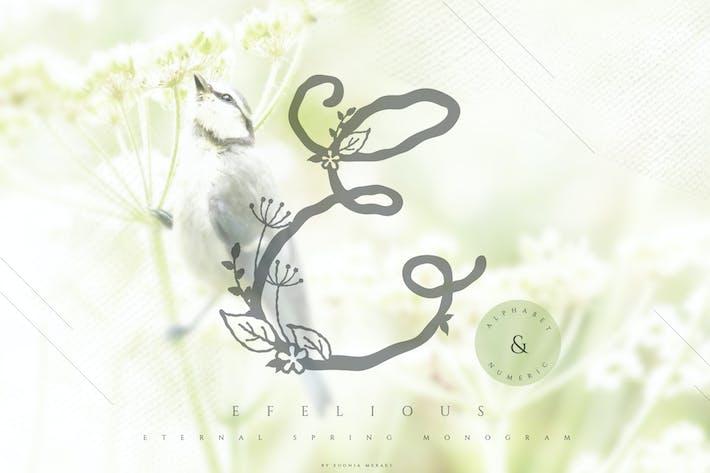 Thumbnail for Efelious - floral monogram set
