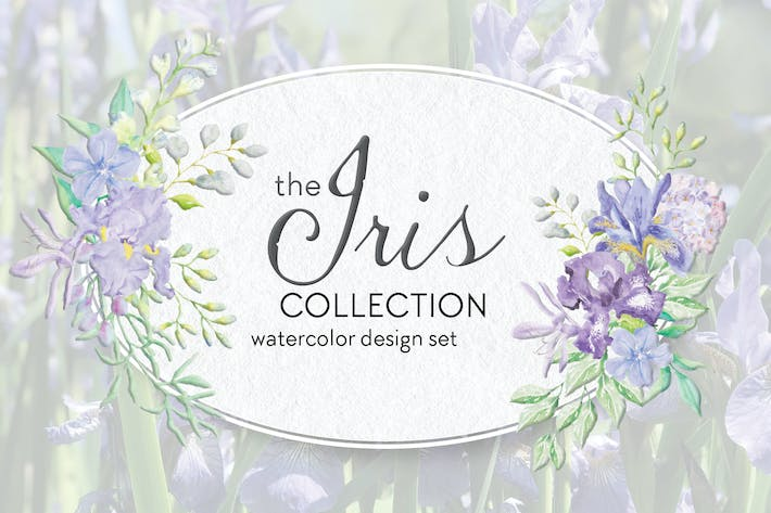 Thumbnail for The Iris Collection: Watercolor Clip Art Bundle