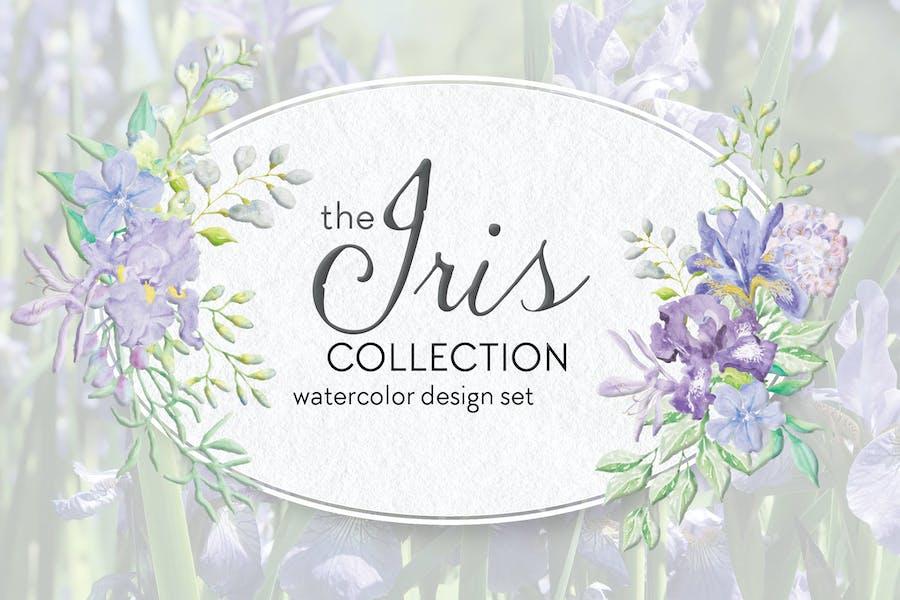 The Iris Collection: Watercolor Clip Art Bundle