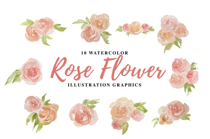 Thumbnail for 10 Watercolor Rose Flower Illustration Graphics