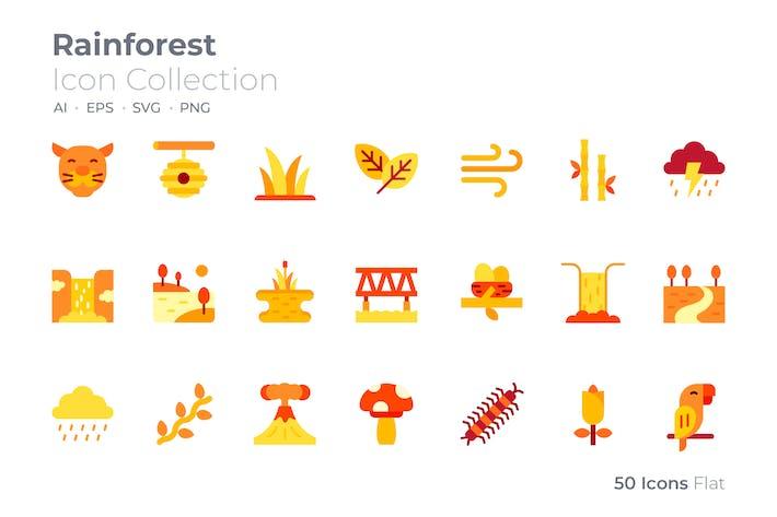 Rain Forest Color Icon
