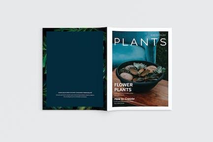 Plants Magazine