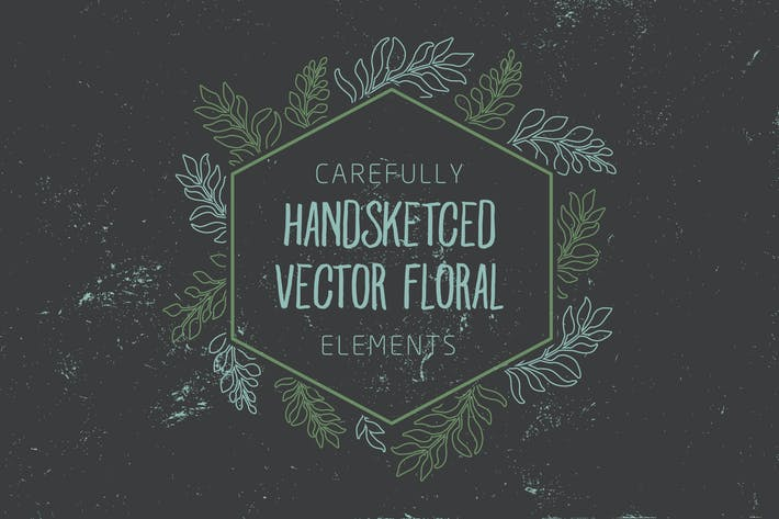 Thumbnail for Carefully handsketched vector floral elements