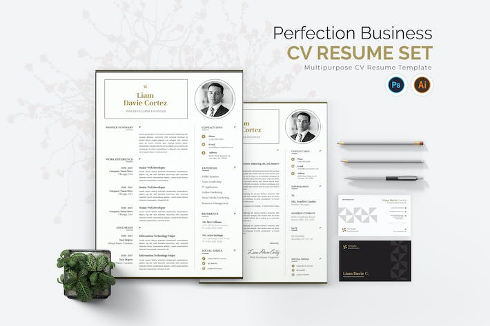 Thumbnail for Perfection Business CV Resume Set