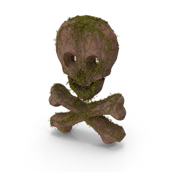 Ancient Stone with Ivy Skull Cross Bone