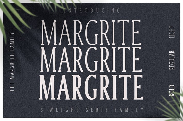 Thumbnail for Margrite - Tall Serif Font Family