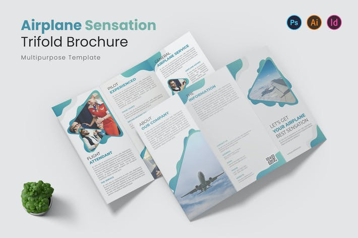 Airplane Sensation Trifold Brochure
