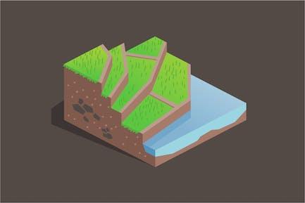 Terrace farming on a hill