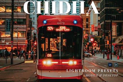 Chidha Mobile and Desktop Lightroom Presets