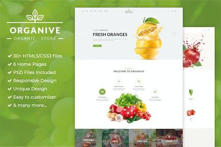 Bio-Shop & Öko-Lebensmittel HTML5 Vorlage