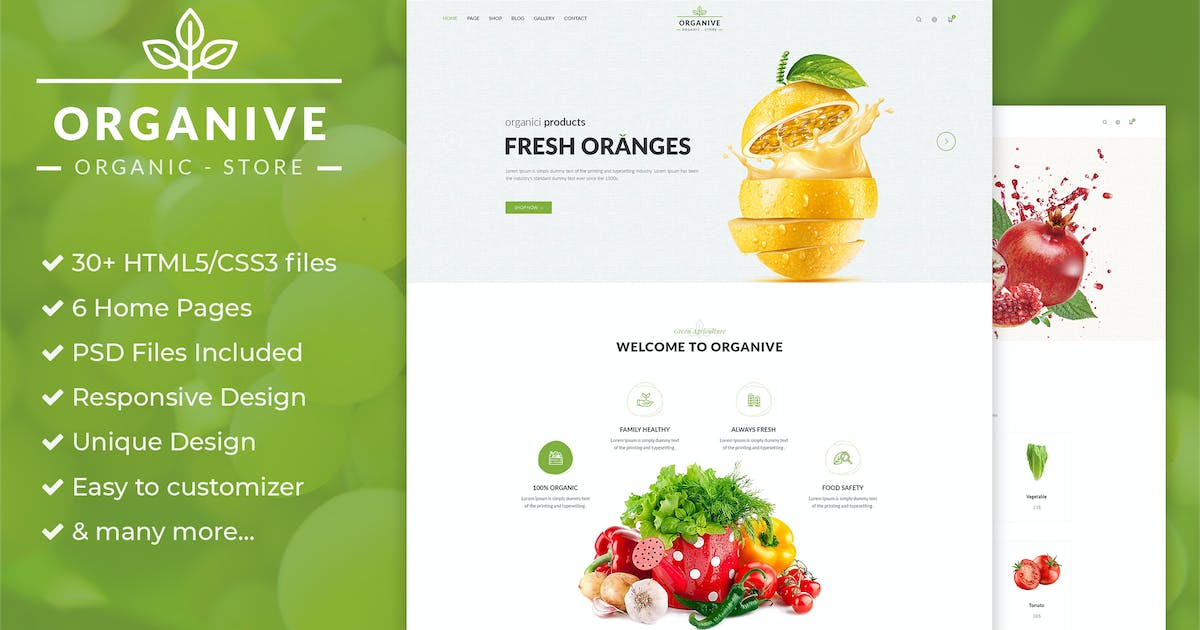 Download Organic Store & Eco Food Products HTML5 Template by AuThemes