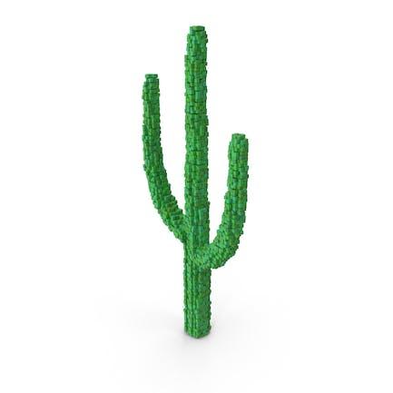 Voxel Cactus
