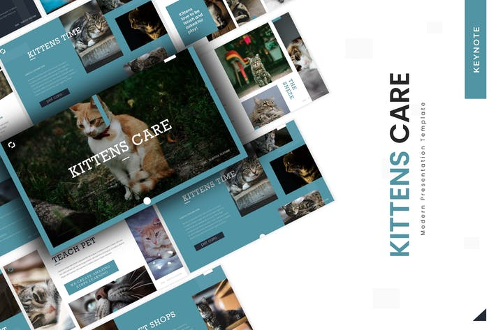 Thumbnail for Уход за котятами - Шаблон Keynote