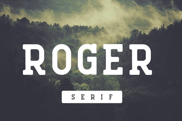 Roger Serif - product preview 4
