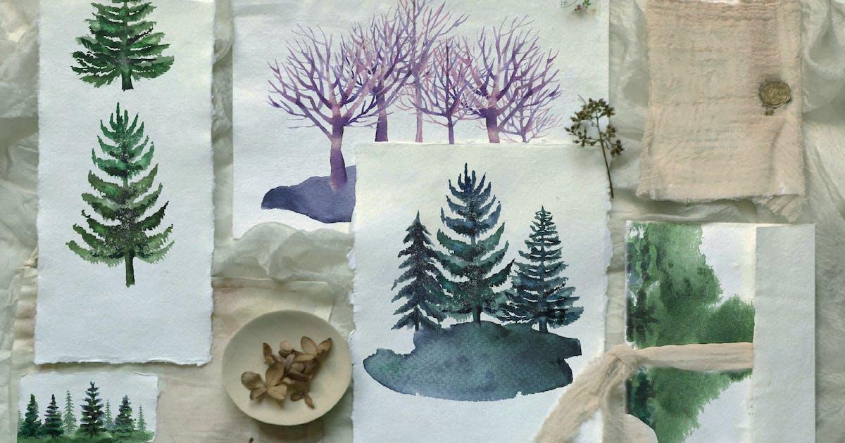 Download Watercolor pine trees set by kaleriia