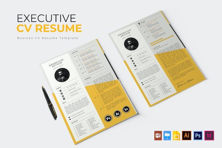 Executive Company | CV & Resume