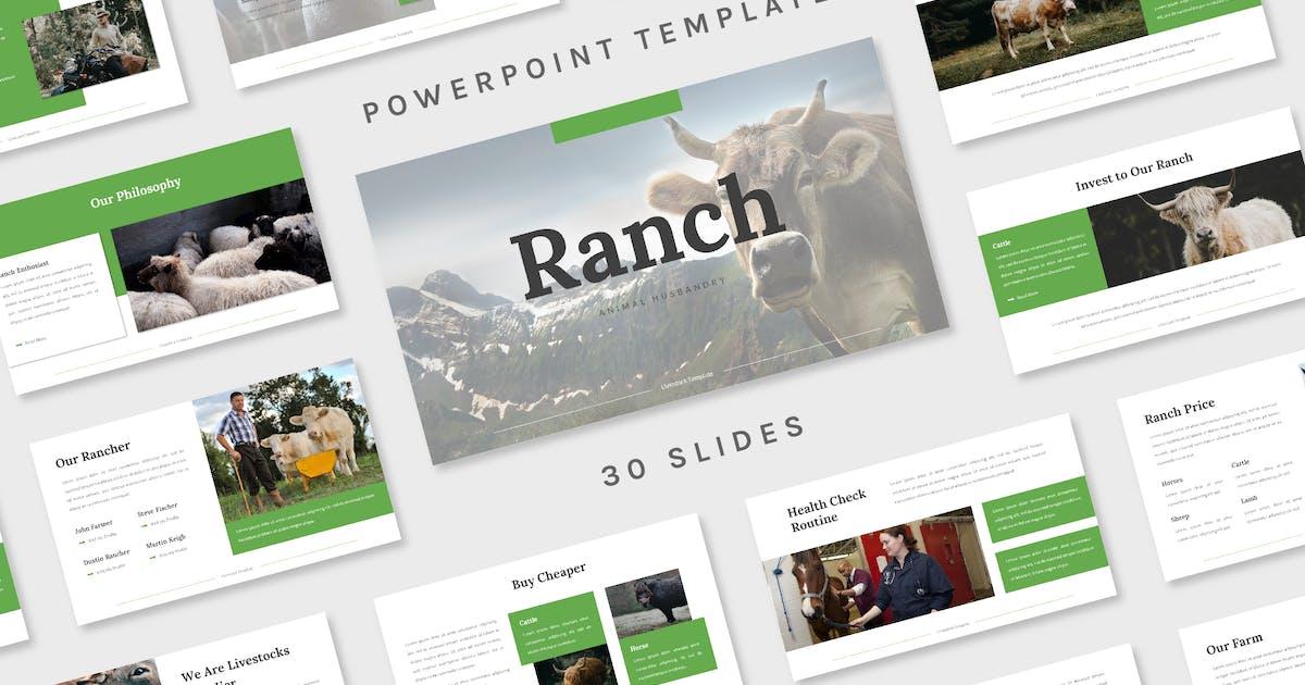 Download Ranch - Powerpoint Template by deemakdaksinas