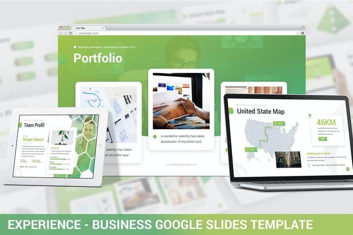 Thumbnail for Experience - Business Google Slides Template