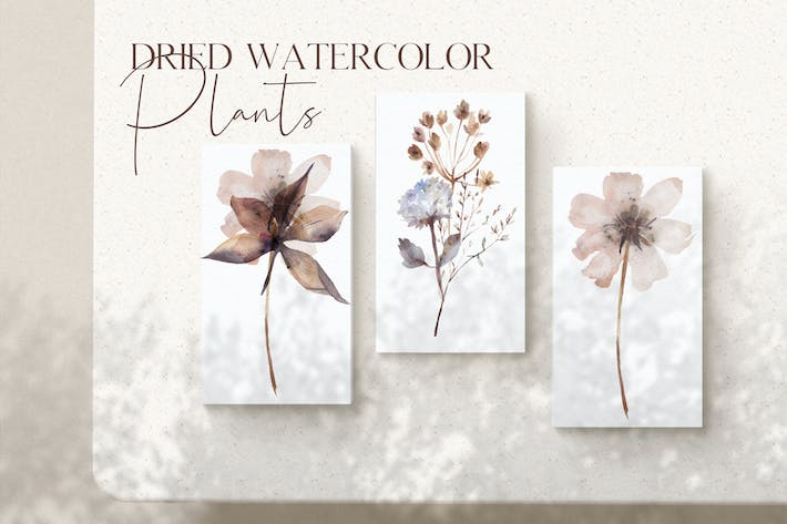Thumbnail for Watercolor dried plants set