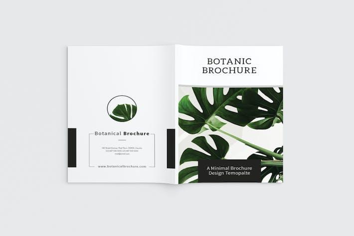 Thumbnail for Botanics - A4 Botanical Brochure Template