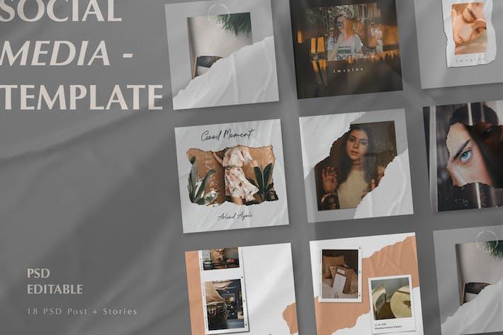 Thumbnail for Rocha - Instagram Beiträge & Stories