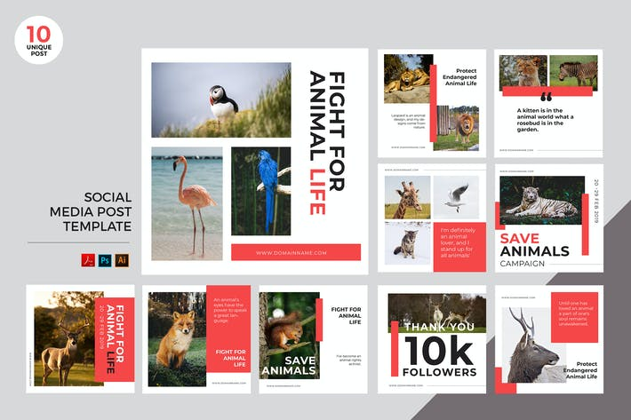 Animal Protection Social Media Kit PSD & AI