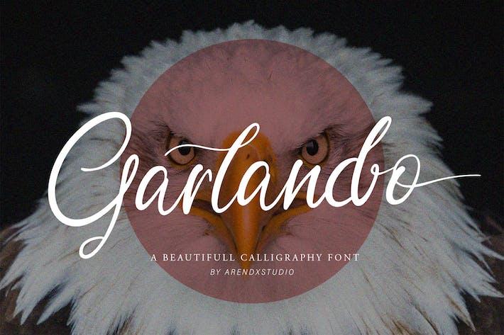 Thumbnail for Garlando Fuente