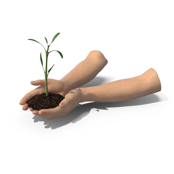 Thumbnail for Hands Holding Plant
