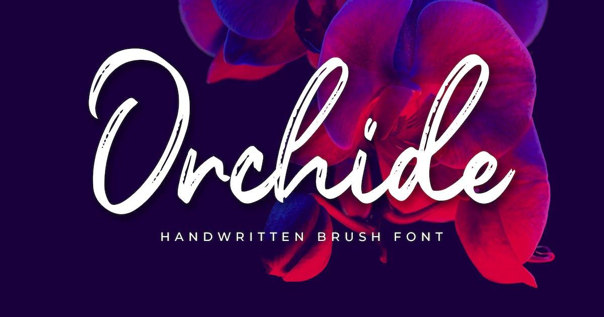 Download Orchide - Handwritten Brush by Alterzone