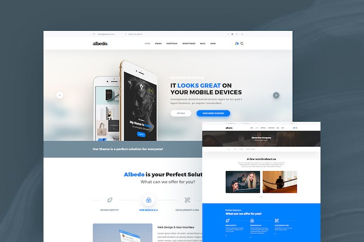 Cover Image For Albedo – Classic & Standard PSD Template