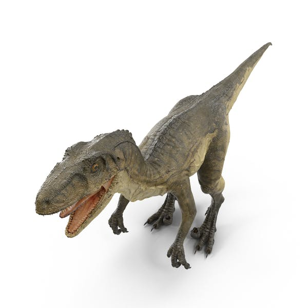 Cover Image for Deinonychus
