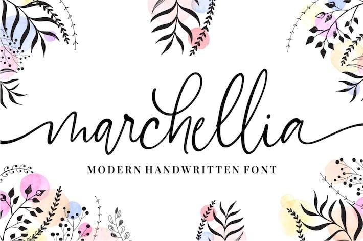 Thumbnail for Marchellia - Современный рукописный