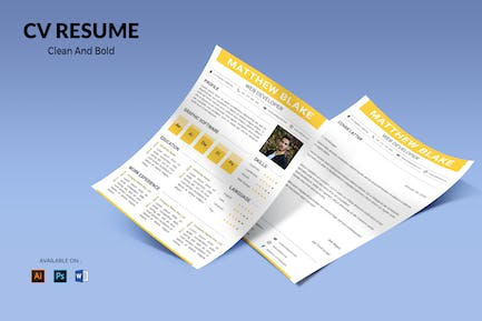 CV Resume Simple And Professional