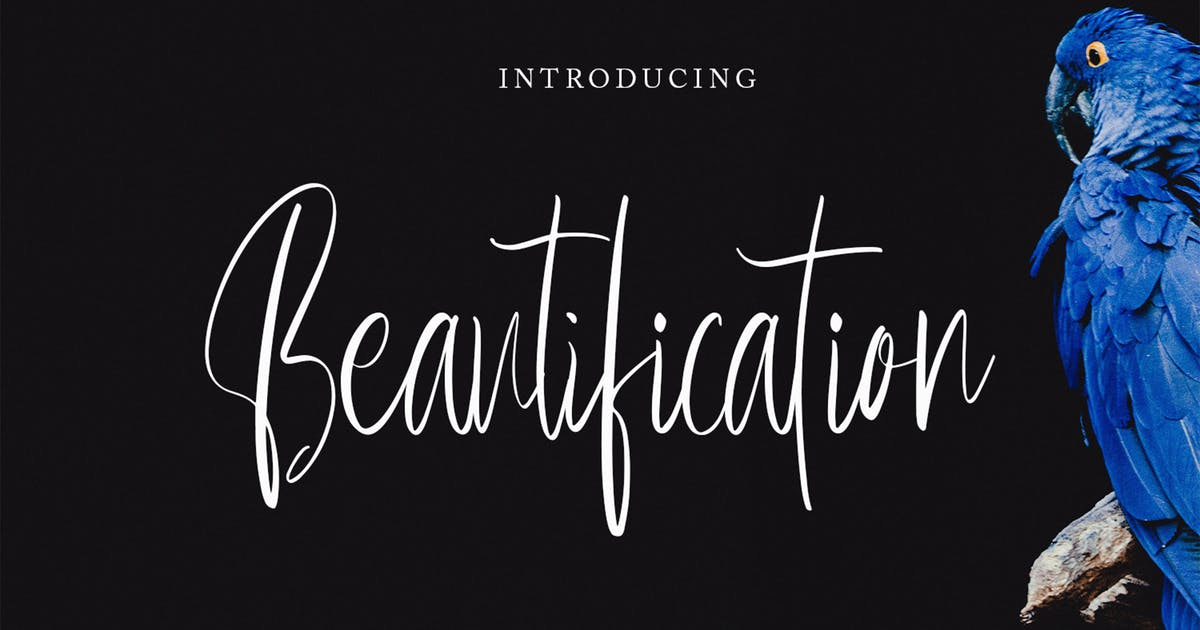 Download Beautification - Signature Font by arendxstudio